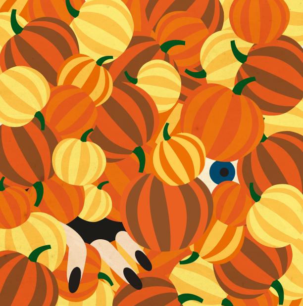 pumpkins: Asia Pietrzyk